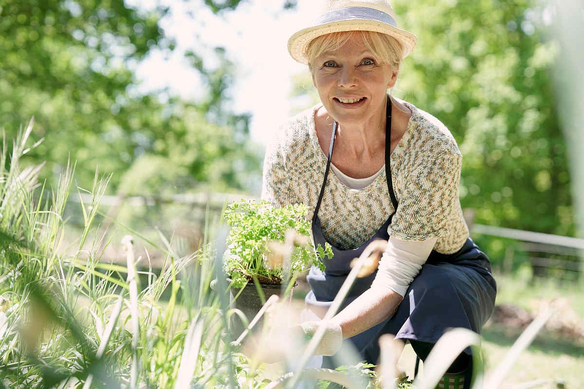 Senior woman gardening on beautiful spring | Plants And Alkaline Water | why do plants need water