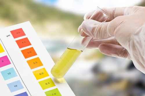 man looking closely at a pH testing strip