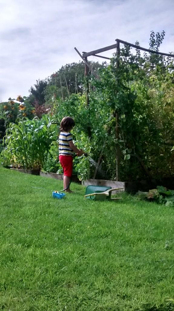 Isaac Garden
