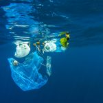 Drowning in Plastic – The Ocean Story