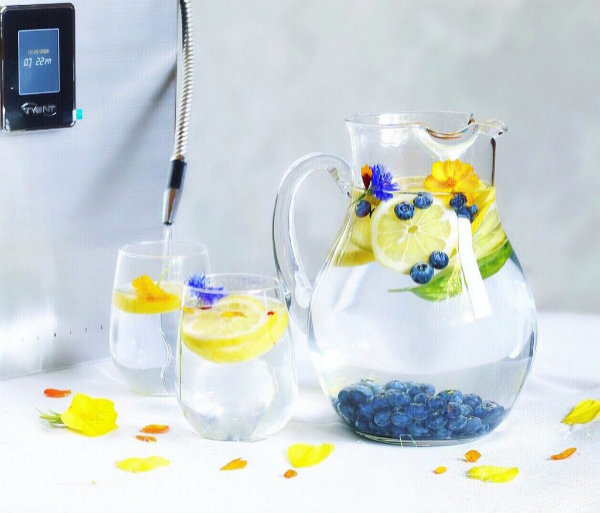 water ionizers