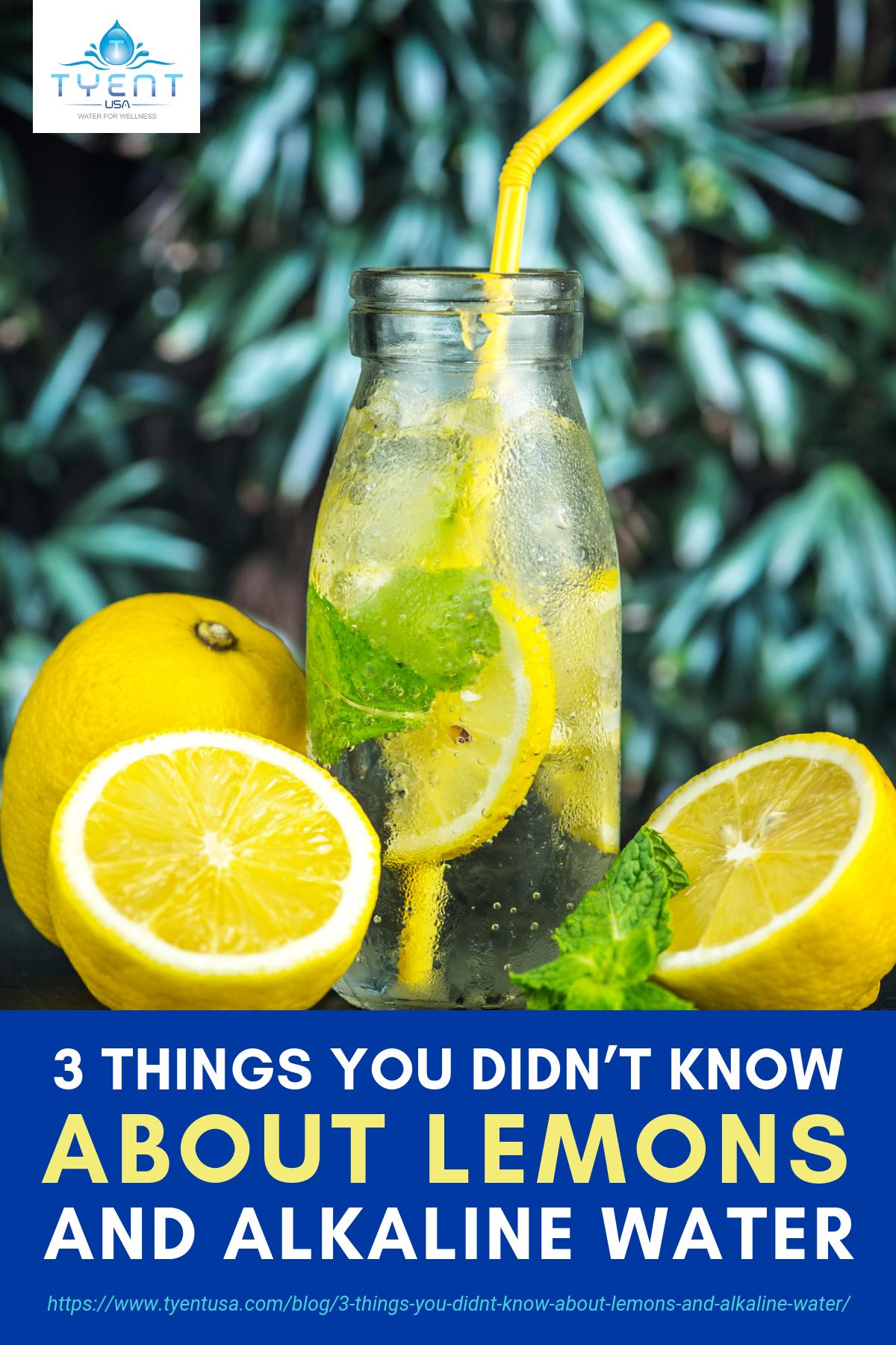 3 Things You Didn't Know About Lemons and Alkaline Water https://www.tyentusa.com/blog/3-things-you-didnt-know-about-lemons-and-alkaline-water/