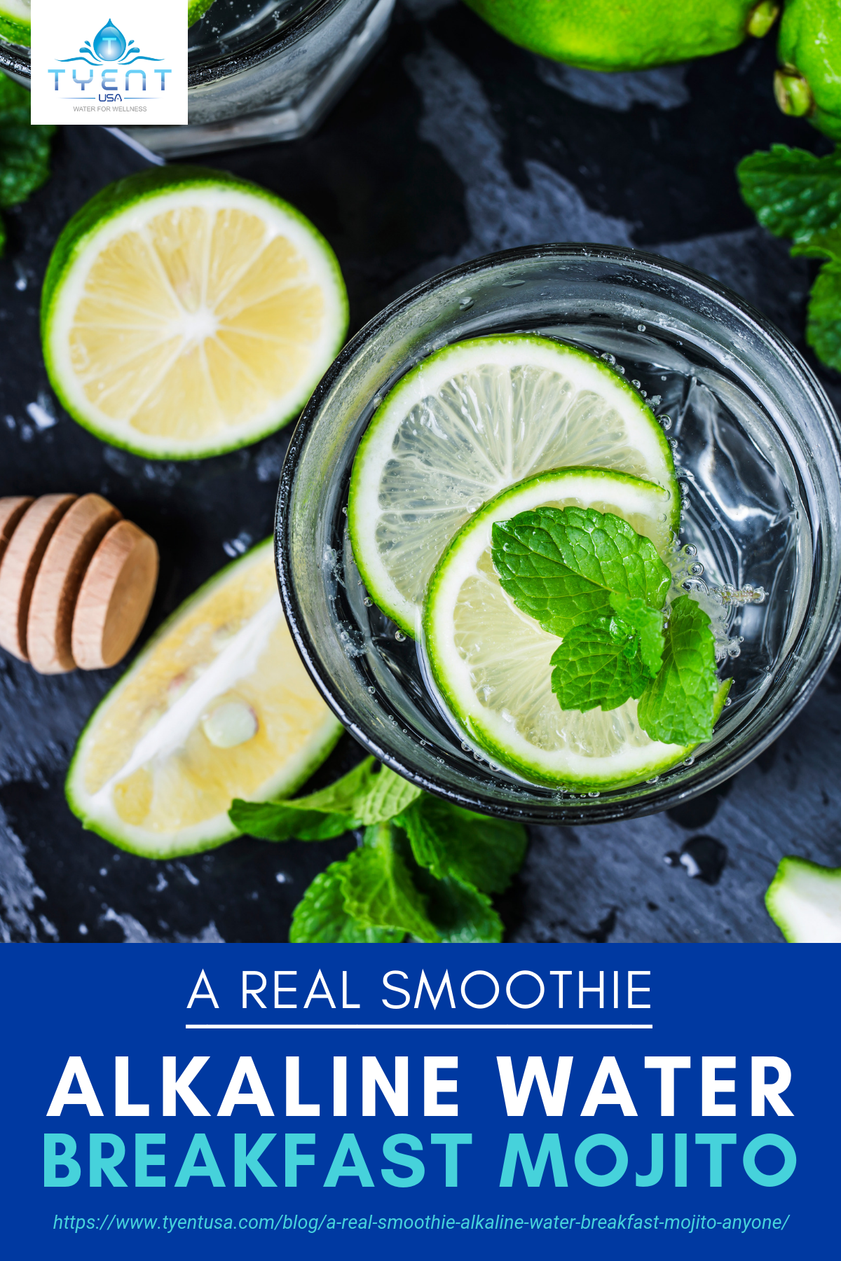 A Real Smoothie | Alkaline Water Breakfast Mojito, Anyone? https://www.tyentusa.com/blog/a-real-smoothie-alkaline-water-breakfast-mojito-anyone/