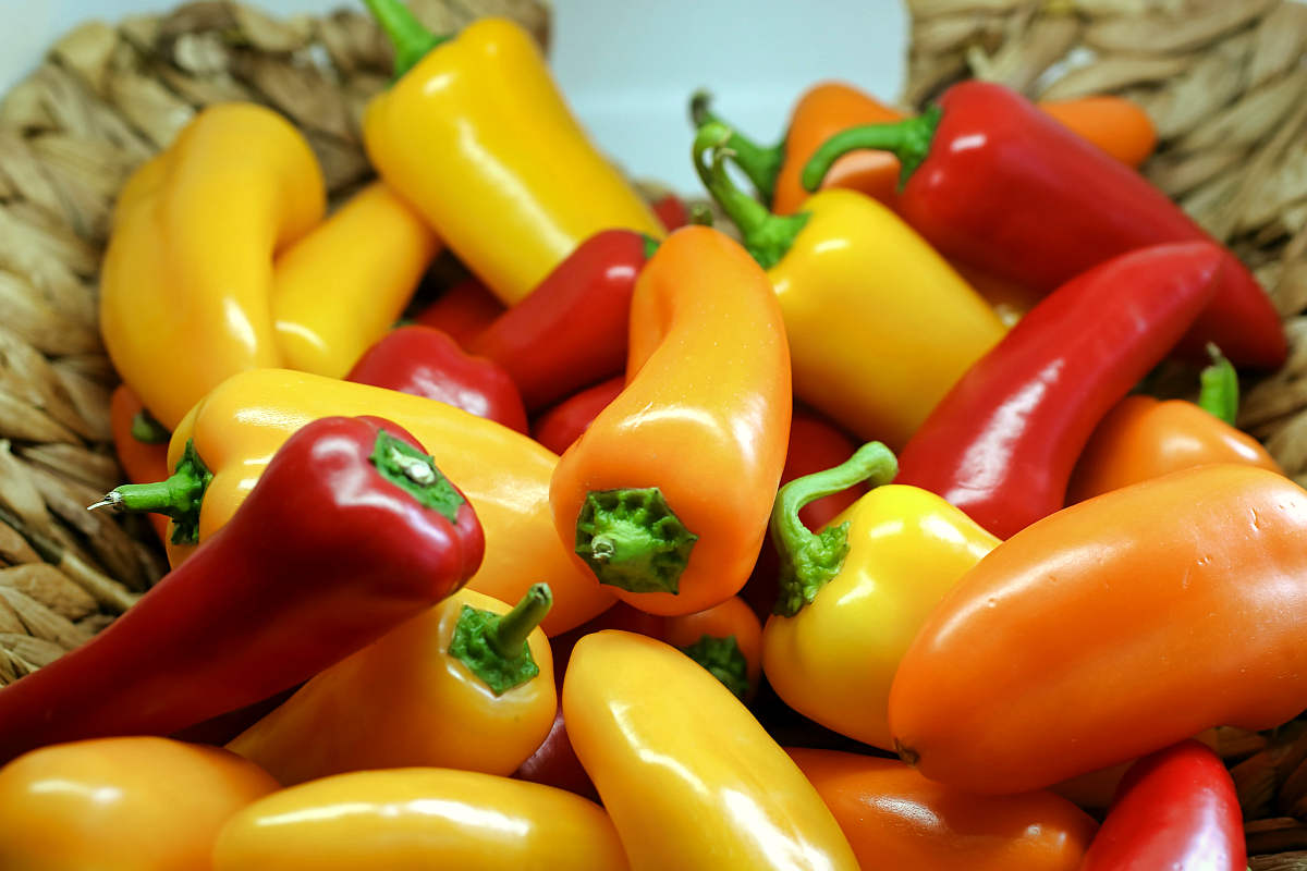 Shallow focus photography of yellow and red bell peppers | Fruits and Veggies That Can Keep You Hydrated