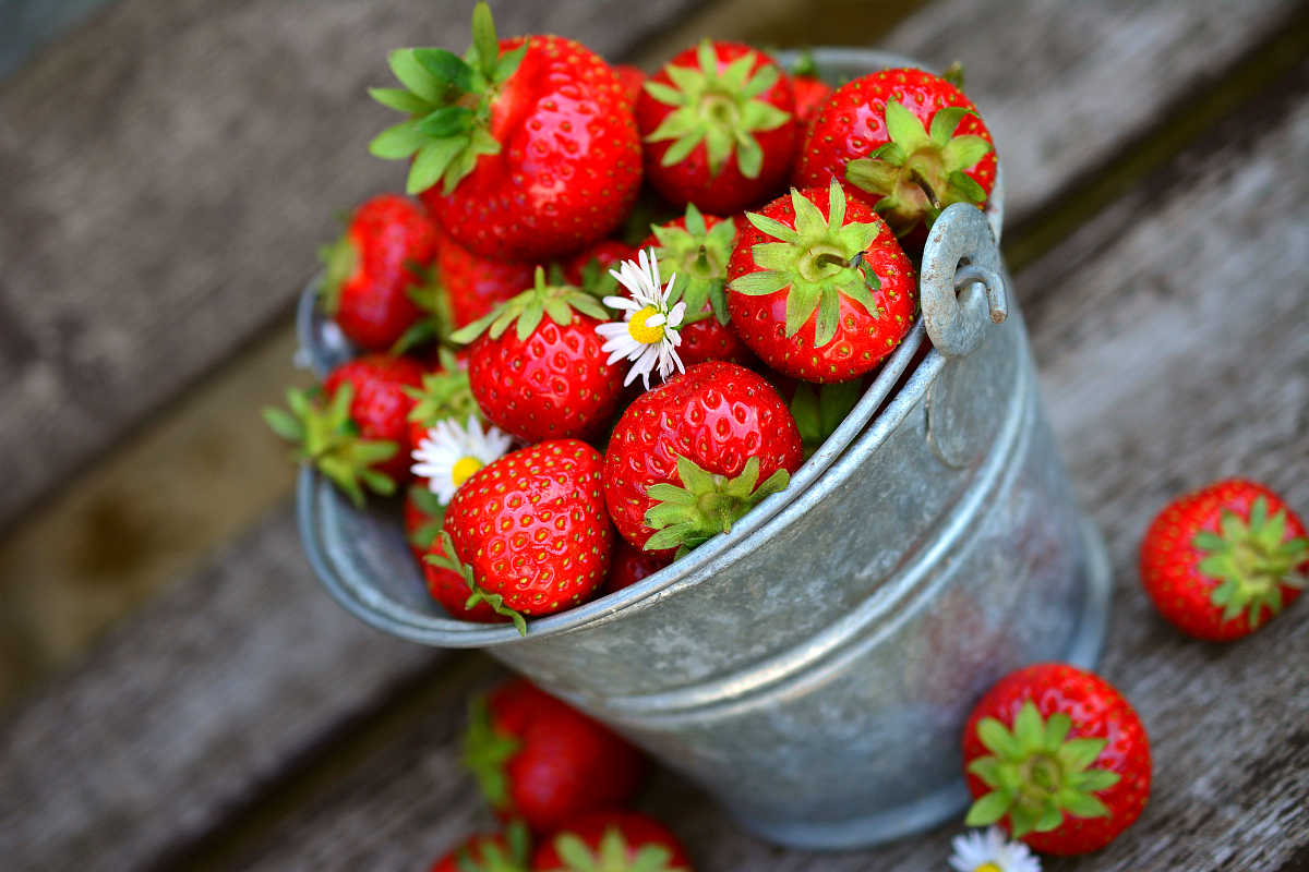 Strawberries fruit delicious food | Most Nutritious Foods to Add to Your Diet