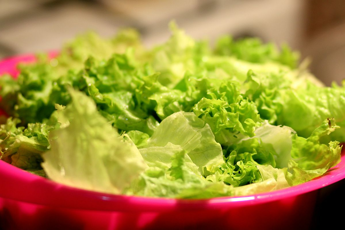 Lettuce in a bowl | Healthiest Foods To Eat