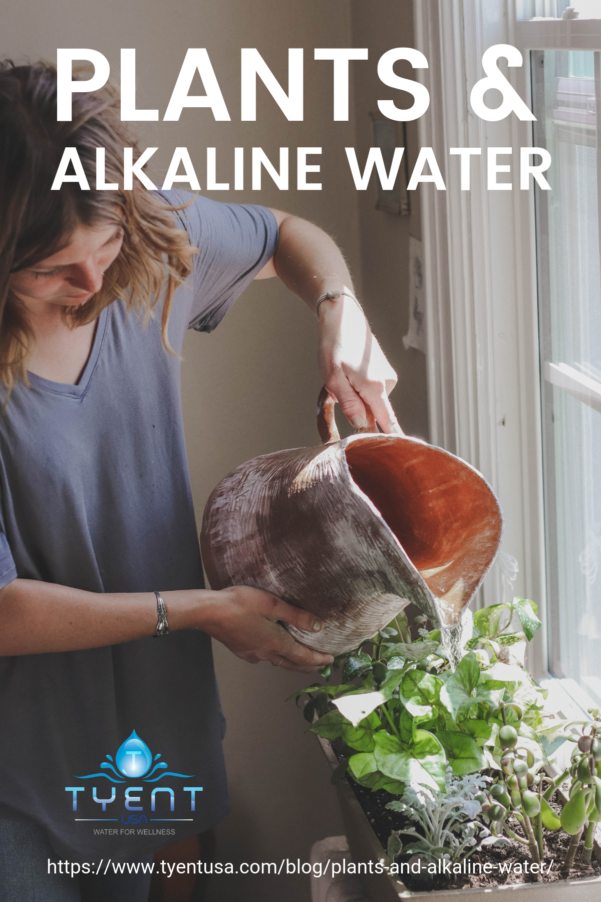 Plants And Alkaline Water https://www.tyentusa.com/blog/plants-and-alkaline-water/