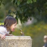 Is It Safe To Drink From A Public Water Fountain?