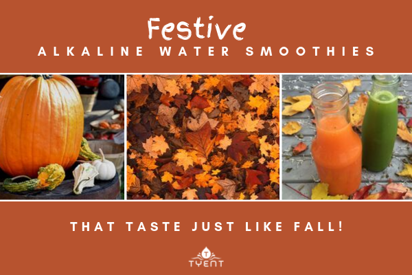 Festive Alkaline Water Ionizer Smoothies That Taste Just Like Fall!