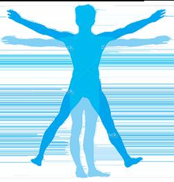 Human Body Minerals